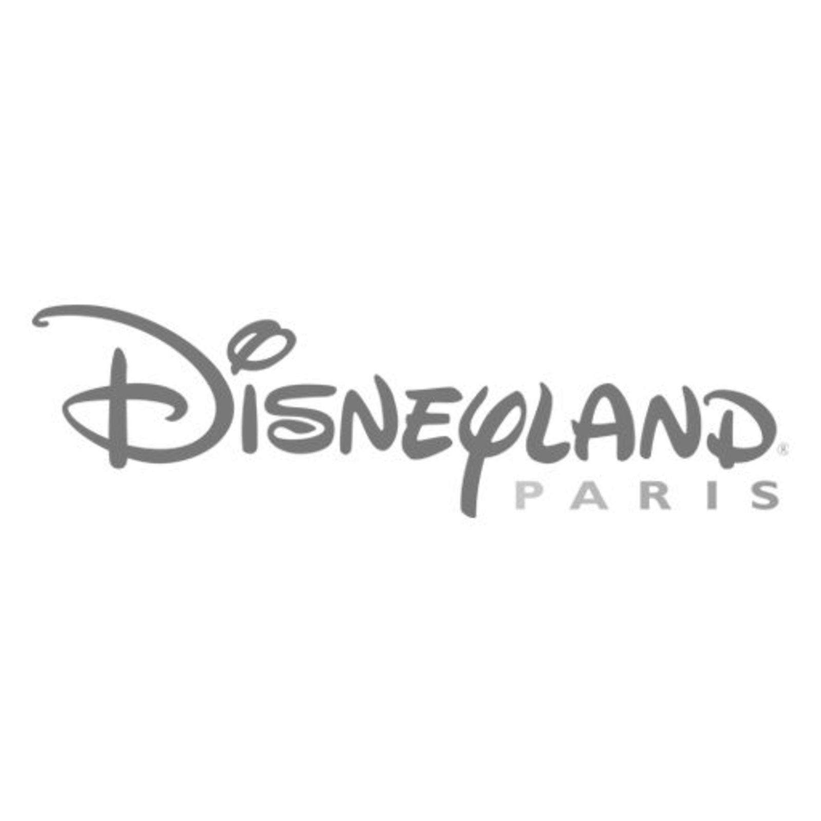 Călătorești la Paris. Ai 15€ reducere la biletul de intrare/persoană și 112€ reducere la bilete/4 persoane.
